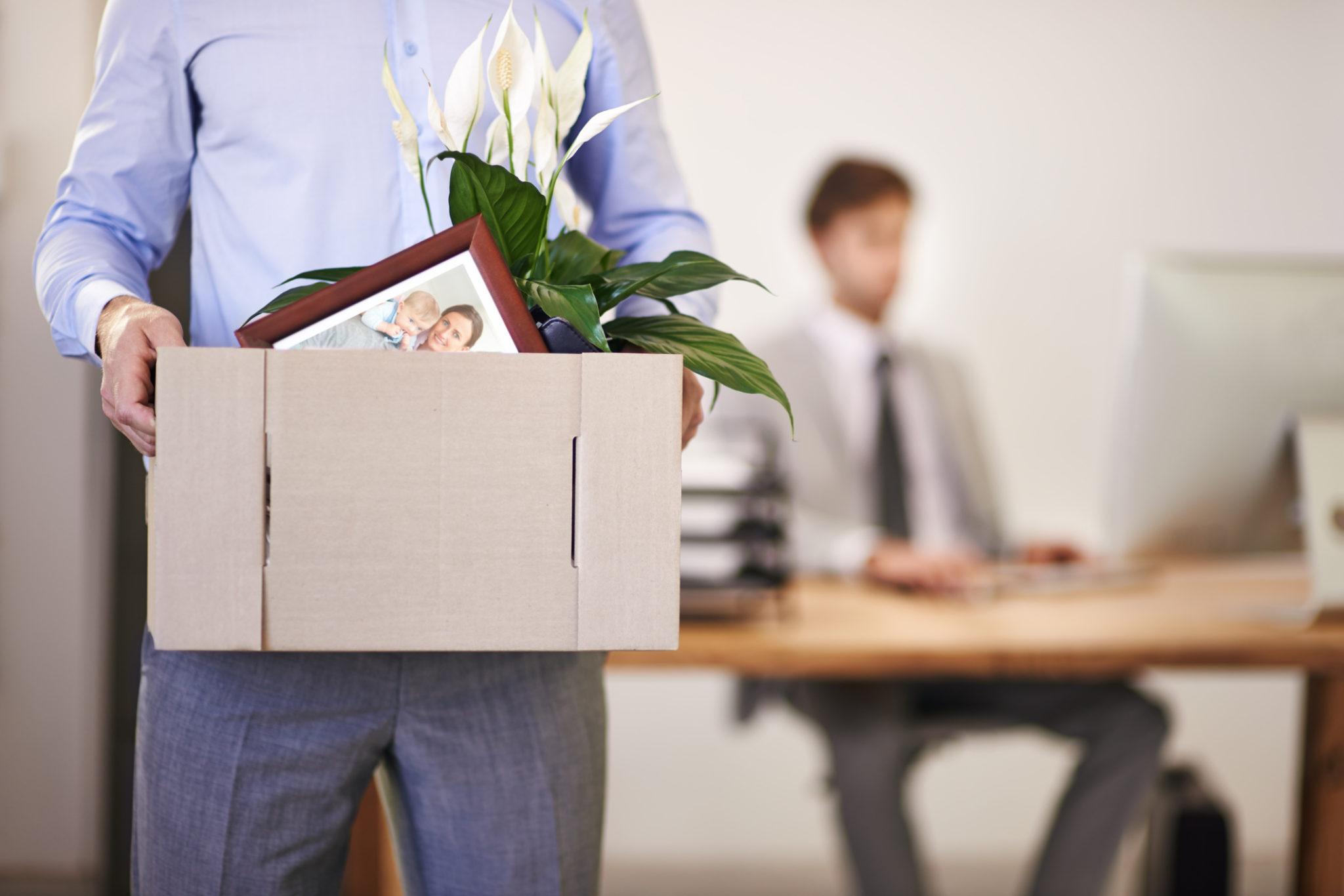 chômage démission pôle emploi