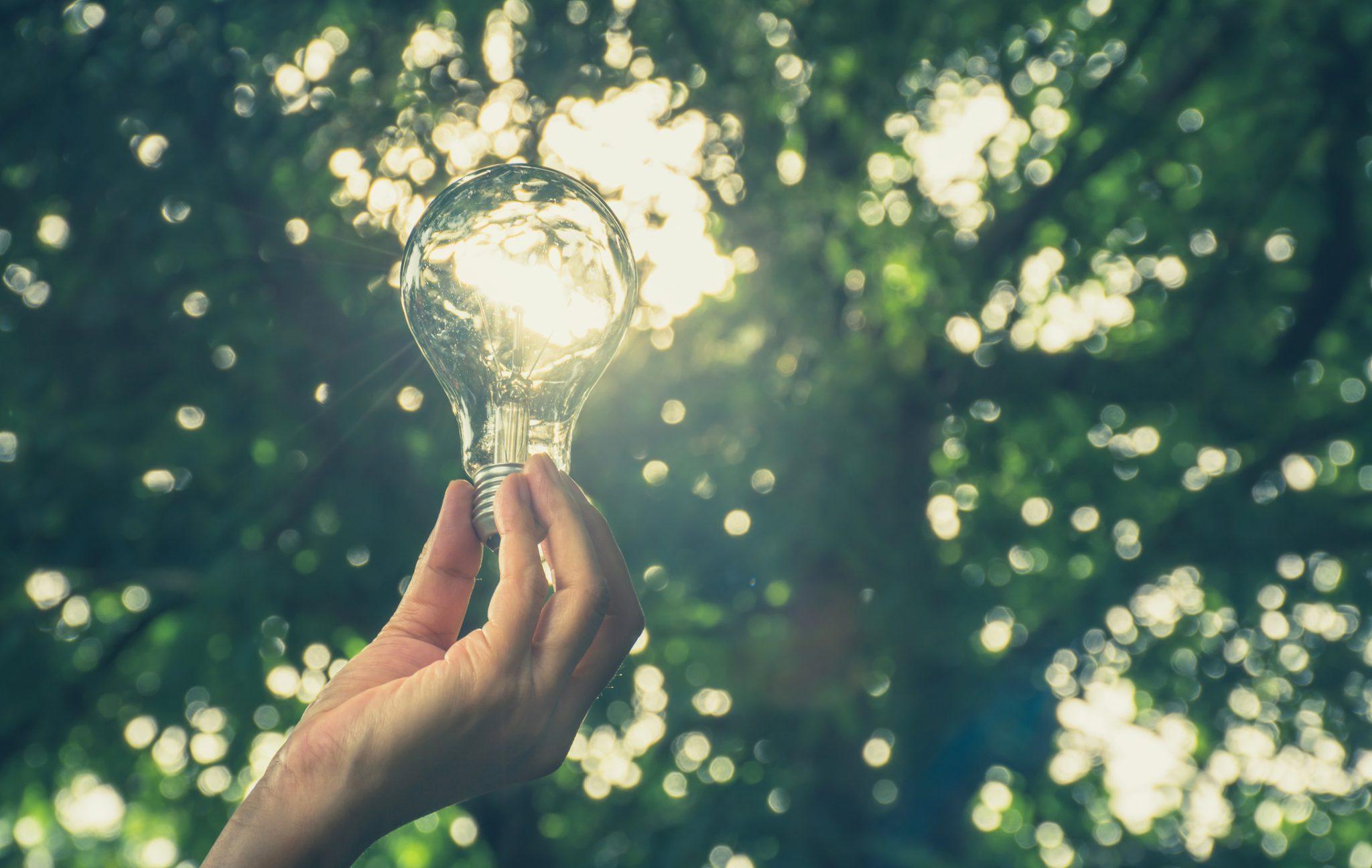 Facture d'électricité énergies renouvelables